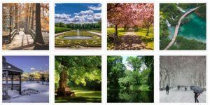 Fotogalerie - Parks - auf mein-garten.de