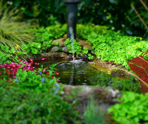 DIY Gartenbau Gartenteich anlegen Video mit Tipps