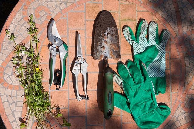 Beitragsbild Blogartikel Gartenscheren Grundllagenwissen und Know How
